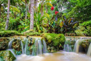 wasserfall terra nostra park sao miguel azoren portugal